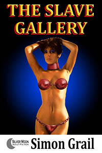 cover design for the book entitled The Slave Gallery