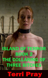 cover design for the book entitled Island Of Terror - Book 2 - The Collaring Of Three Bitches