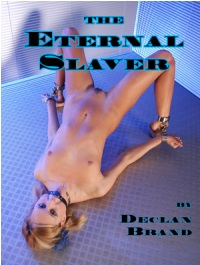 cover design for the book entitled The Eternal Slaver