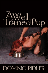 cover design for the book entitled A Well Trained Pup