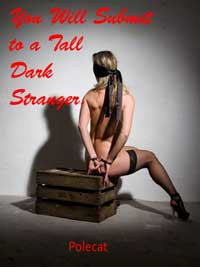 cover design for the book entitled You Will Submit To A Tall Dark Stranger