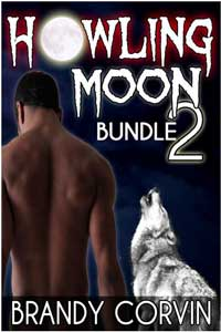 cover design for the book entitled Howling Moon Bundle 2