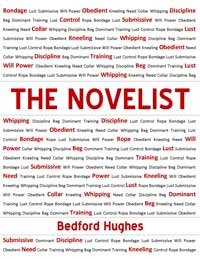 cover design for the book entitled THE NOVELIST