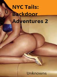 cover design for the book entitled NYC Tails: Backdoor Adventures 2