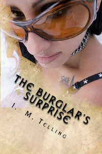 cover design for the book entitled The Burglar's Surprise