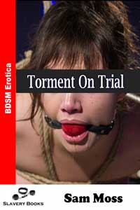 Torment On Trial by Sam Moss