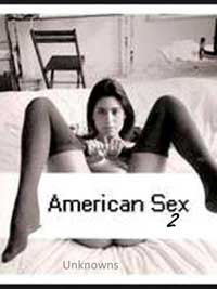 cover design for the book entitled American Sex 2