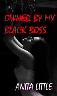 cover design for the book entitled Owned by my black boss