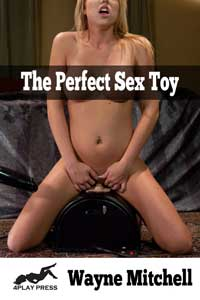 cover design for the book entitled The Perfect Sex Toy