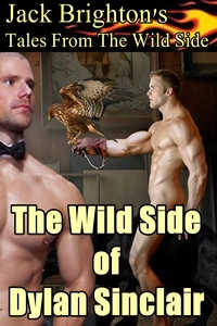 cover design for the book entitled The Wild Side of Dylan Sinclair