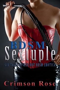 cover design for the book entitled BDSM Sextuple